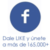 Facebook-LaShoppinista