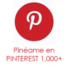 PinterestLaShoppinista