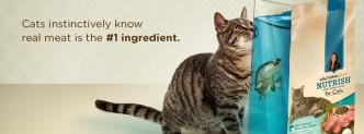 Muestras Gratis de Comida de Gatos Rachel Ray Nutrish