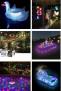 Inflables y Accesorios de Piscina o Playa, con Iluminación