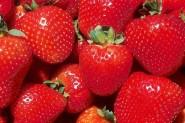 1lb. Fresas Frescas de US 2 por $5