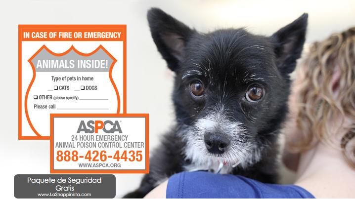 Gratis, paquete de seguridad para mascotas